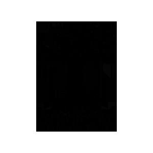 salakirjat_logo